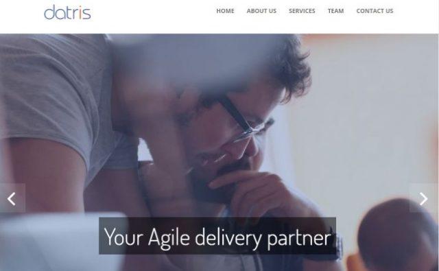 Datris Technology Solutions | Ingenuous | Website Design & Marketing